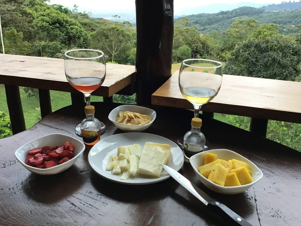 Fruit Wines and Manchego Cheese, Made and Enjoyed in Costa Rica