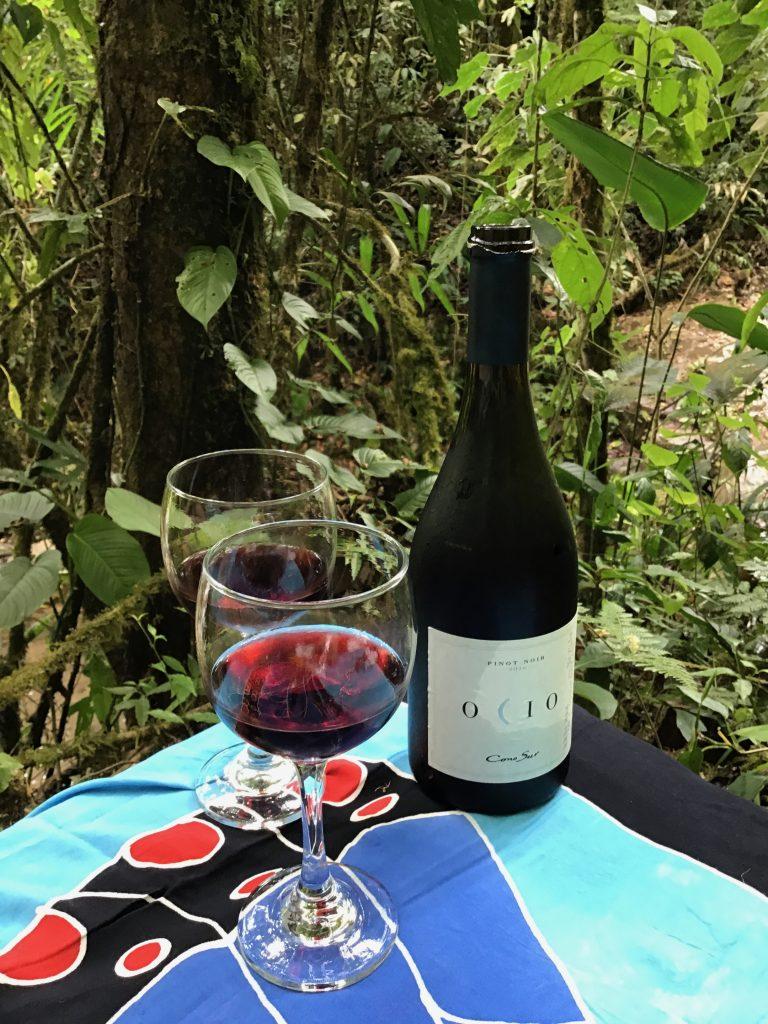 2016 Ocio by Cono Sur, ready, set, sip