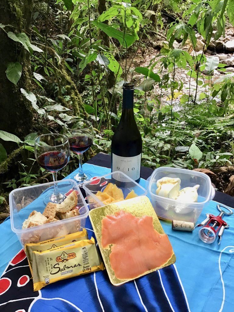 Our wine picnic at Fudebiol, Centro Biologico Las Quebradas, Costa Rica