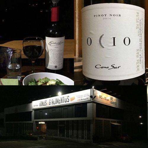 wines from Bottega Wine Shop- Escorihuela Gascón Syrah and Ocio Pinot Noir by ConoSur