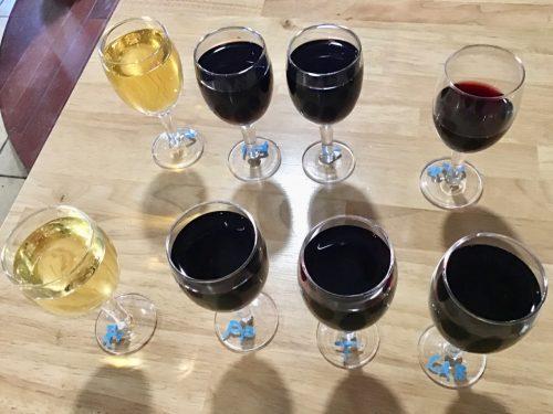wine tasting line up at St Croix Cellars