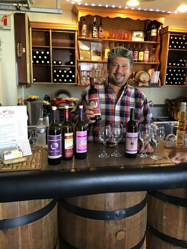 Anthony the owner of Vino Veritas Winery